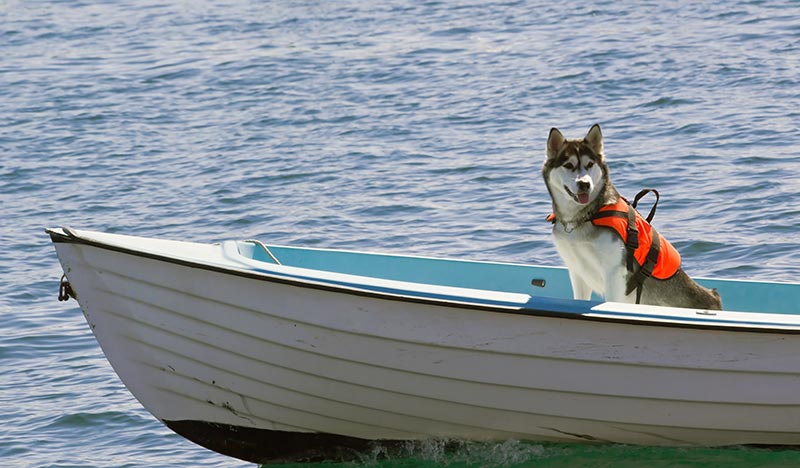boat-safety-tips-for-staying-safe-on-the-water