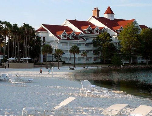 Who's to Blame for the Alligator Attack at Walt Disney World?